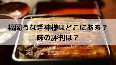 【SHOWチャンネル】福岡うなぎ神様はどこの店?通販は?